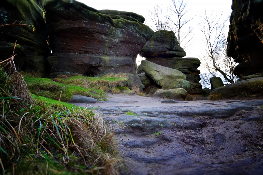Below Brimham Rocks