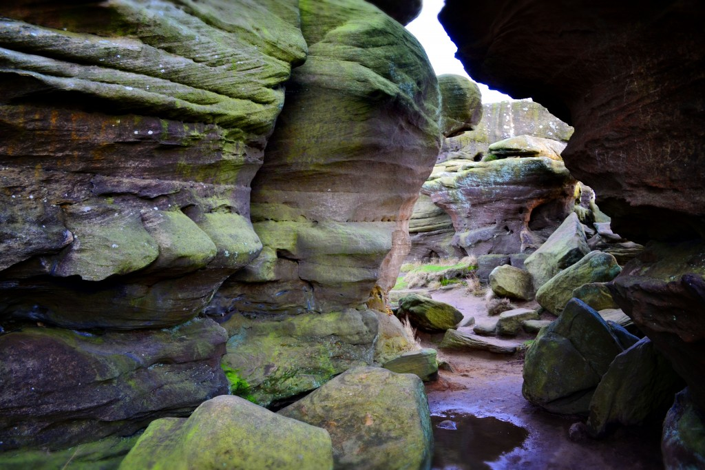 Between Brimham Rocks