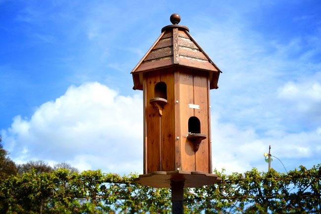 Ornamental bird house