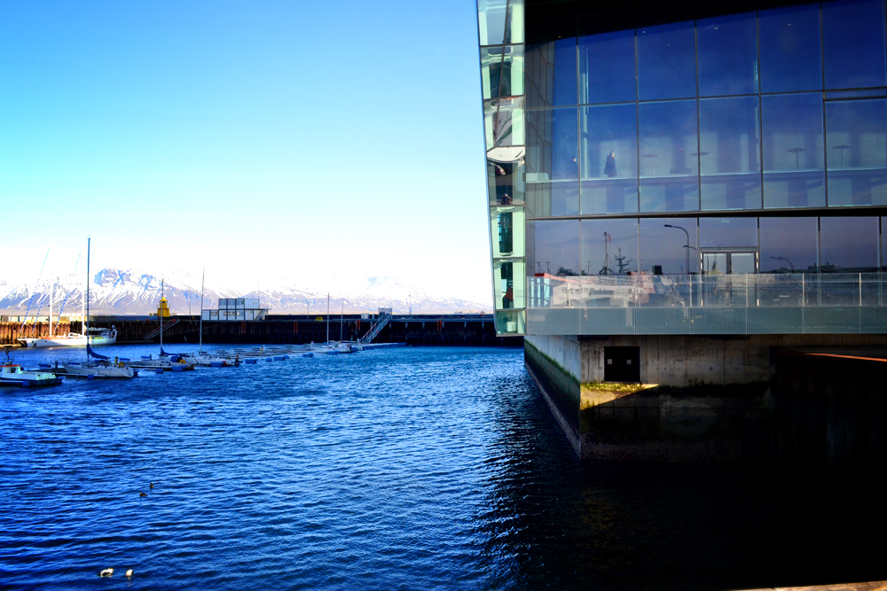 Harpa water